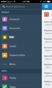 Salesforce1 - Tabs
